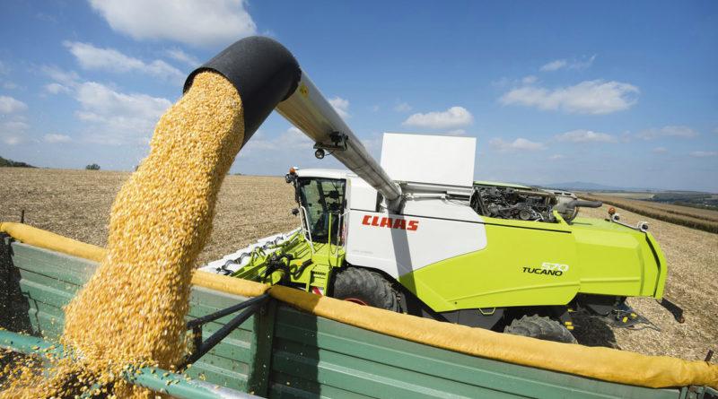 Свыше 48 тысяч тонн зерна пшеницы намолотили хлеборобы Михайловского района