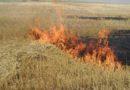 На Алтай надвигается жара. В МЧС напомнили суммы штрафов за нарушение правил пожарной безопасности
