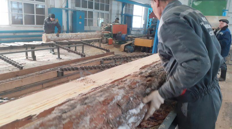 На  Михайловском производственном участке КАУ «Боровлянский лесхоз» создают новые рабочие места и к маю планируют наладить глубокую переработку древесины