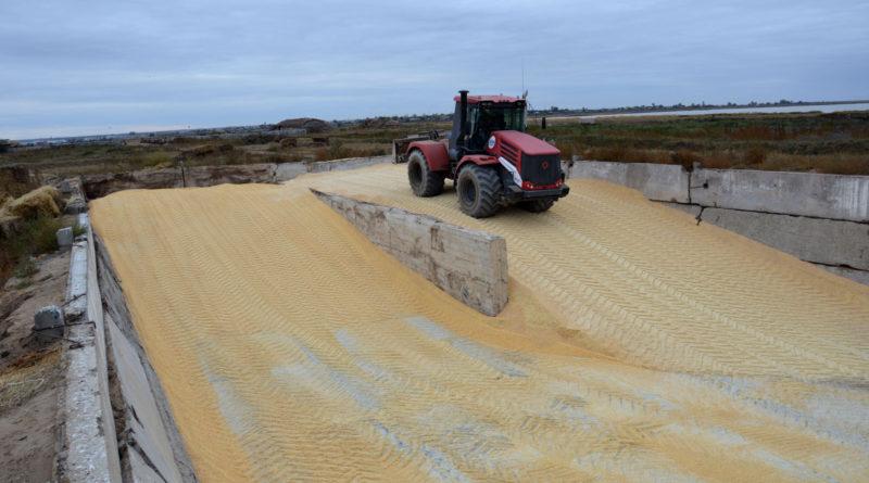 Для сытной зимовки: в  хозяйствах района продолжается заготовка кормов